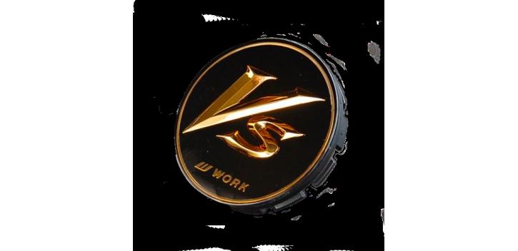 CENTER CAP VS-XX WORK WHEELS